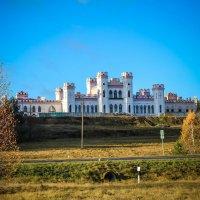 Дворец Пусловских (Коссовский замок) :: Екатерина Шиманская