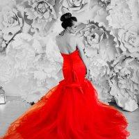 Черно-бело-красный :: Дмитрий Г.