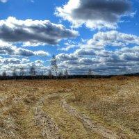 Весенний пейзаж :: Милешкин Владимир Алексеевич
