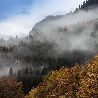 Абхазия -Кодорское ущелье. :: Александр Криулин