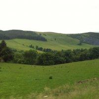 Пейзаж южной Шотландии :: Марина Домосилецкая