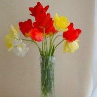 Букет моих тюльпанов... :: Тамара (st.tamara)