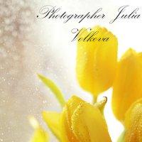 Тюльпанчики :: Julia Volkova