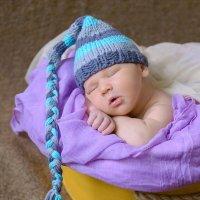 Никита, родился 8 дней назад :: Александр Пивоваренок