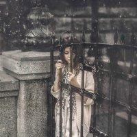 Отрывки из отчаяния :: Мария Буданова