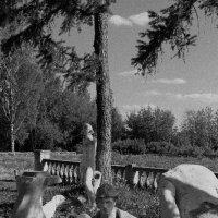 Музей советской эпохи :: Алена Слышкова