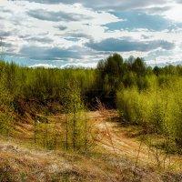 согретые солнцем... :: Сергей Бойцов