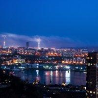 Бухта Золотой Рог. Вид на Русский мост :: Дмитрий