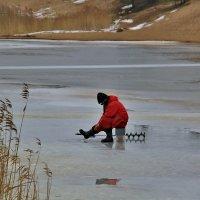 По последнему льду,,,,,,,или карбонарии не тонутЪ :: Юный Пионер Одиннадцатый