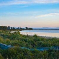 Сор- болотистый залив Байкала :: Алёна Хрянина