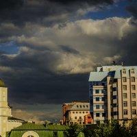 Птицы перед дождём :: Михаил Тищенко