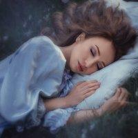 Волшебный сон :: Анна Локост