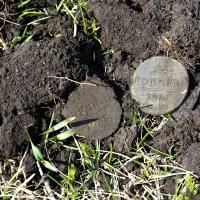 Отпечаток Старой Монеты.. :: Дмитрий Петренко