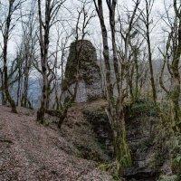 Замок феодала ,Абхазия. :: Александр Криулин