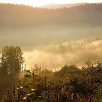 Солнце гонит туман :: Сергей Чиняев
