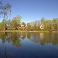 Золотой пруд :: Валерий Самородов