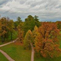 Вид с Башни-Руины на Рампповою аллею... :: Sergey Gordoff