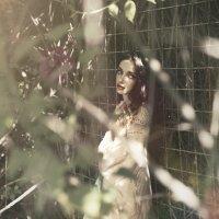 Блик объятия :: Мария Буданова