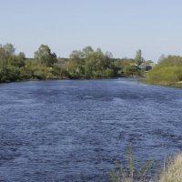 вдоль реки :: оксана