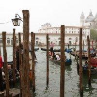San Marco :: liudmila drake