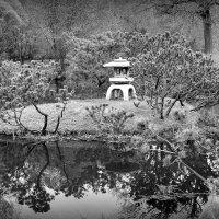 ч/б сны о Японии :: Татьяна Тимохина