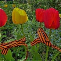 Цветы в Праздник Победы 3... :: Sergey Gordoff