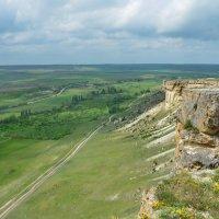 Весенний пейзажик. Зеленая травка, предгрозовое небо и прекрасное настроение от этой высоты! :: Ольга Голубева