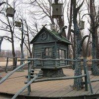 Весна в Центральном парке :: Дмитрий Никитин