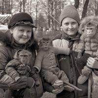 Молодая семья снимет комнату ))) :: Рома Григорьев