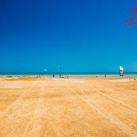 Из пустыни :: Alulim Photo