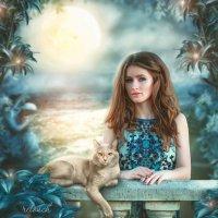 """Коллаж """"Девушка и кот"""" :: Екатерина Сачева"""