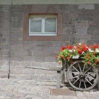 В монастыре Лихтенталя :: Николай Танаев