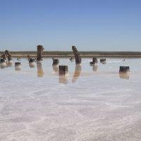 руины :: Sage Ekchard