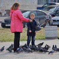 Любовь и голуби...) :: WADIM *****