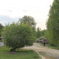 Хорошо в деревне в мае.. :: Galla