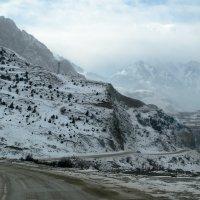 Дорога в горы... :: Юлия Бабитко