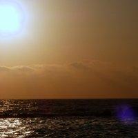 Солнце в кадре. :: Пётр Беркун