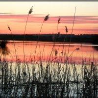 тихий вечер :: victor leinonen
