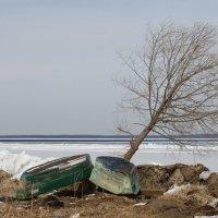 Плещеево озеро :: Валерия Тарасова