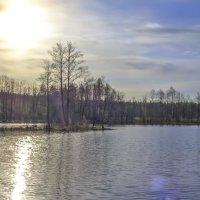 Барское озеро :: Сергей Цветков