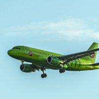 Airbus A319 :: Ася Зайцева