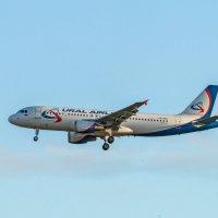 Airbus A320 :: Ася Зайцева