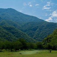 Красоты Абхазии :: Ruslan