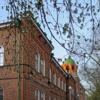 Историческое здание Оренбургского духовного училища (1) :: Elena Izotova