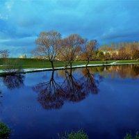 Отражения светлого пруда... :: Sergey Gordoff