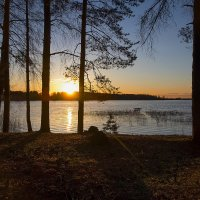 Вышневолоцкое водохранилище :: Дмитрий Колесников