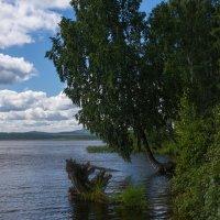 Лесное озеро :: vladimir Bormotov