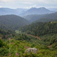 Вид с вершины горы Аибга :: Татьяна