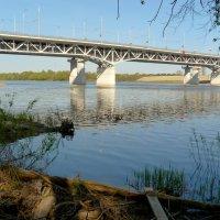 мосты через Сож :: Александр Прокудин