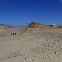 Мертвые дюны :: Татьяна Панчешная